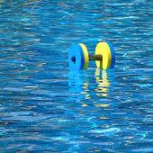 Floating Aqua Aerobics Dumbbell