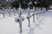 Crosses in cemetery in winter