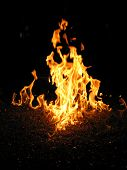 Flames 7