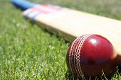 stock photo of cricket bat  - New cricket ball and bat on green grass - JPG
