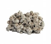 Siderite   Mineral