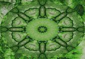 Verde Twirly