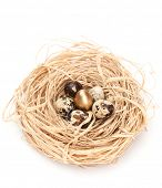 Miraculous nest with golden and natural quail eggs, isolated on white