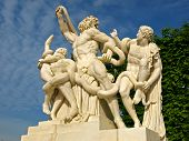 Laocoon Sculpture At Versailles