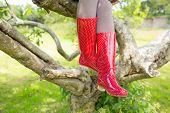 Woman wearing red rubber wellington boots sitting on a tree on a sunny day