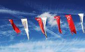 Flags In Kusadasi