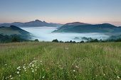 Beautiful Wild Area In Fatra Slovakia
