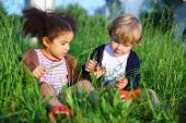 Little girl and boy sitting in the grass and consider a blade of grass