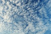 Altocumulus Clouds - Natural Beauty Contrast Background