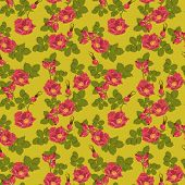 Seamless floral background with wild rose