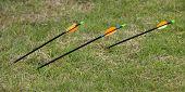 Three Archery Arrows.