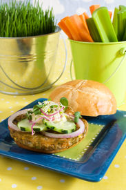 picture of veggie burger  - Veggie burger on a bun with onions cucumber hummus and sprouts - JPG