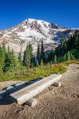 Bench And Mount Rainier