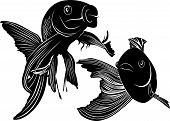 foto of swim meet  - goldfish carp vector natural tropical aquarium water - JPG