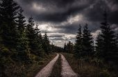 stock photo of rain clouds  - Mystical forest with rain clouds in Spindleruv Mlyn - JPG