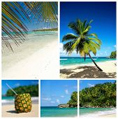 Caribbean Beach Collage