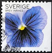 Pansy Stamp