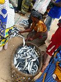 Mtwara, Tanzania - December 3, 2008: The Fish Market.