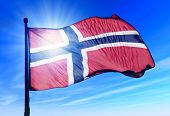 Norway Flag Waving On The Wind