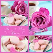 pic of blue rose  - Collage of stylish elegant shabby chic style vintage aqua blue tray with macarons cup of tea and bright pink rose with sample text - JPG