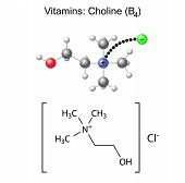 Structural Chemical Formula And Model Of Vitamin Choline - B4