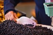 Blueberry Selling In A Market