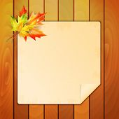 Sheet Of Paper With A Place For Your Text Decorated With Autumn Maple Leaves