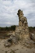 Stone Forest in Bulgaria. Stones mineral origin. Group.