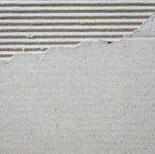 Torn Corrugated Cardboard Texture