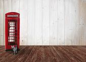 Wooden Background With British Phone Box, Tabby Cat And Copy Space