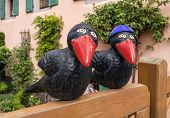 Two ravens on a garden fence