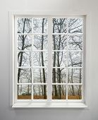 Modern residential window with forest view during autumn