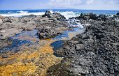 Northern Fuertventura, Shallow Rock Pool On Black Volcanic Rocky Shore, Lanzarote In The Background
