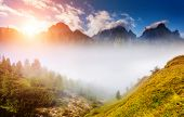 Great view of the foggy valley. National Park. Dolomites (Dolomiti), South Tyrol. Creative collage. Italy, Europe. Dramatic scene. Beauty world.