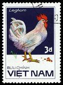 Vintage  Postage Stamp. Bird Leghorn.