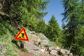 image of ascending  - Road work sign on a path ascending into a forest - JPG
