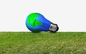 Incandescent Bulb On A Green Meadow