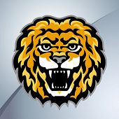 Lion head mascot. Vector illustration.