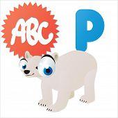 cute cartoon comic isolated vector animal abc: P is for Polar Bear