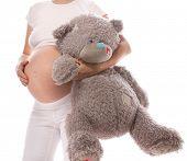 pregnant caucasian woman closeup body solated on white background studio shot teddy bear