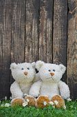 Two cute teddy bears sitting before a wall of an old wood. Idea for a greeting card.