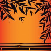 picture of bamboo leaves  - Bamboo trees and leaves at sunset time - JPG