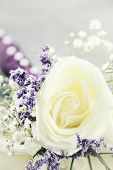 stock photo of maids  - Macro of a brides maids bouquet with extreme shallow depth of field - JPG