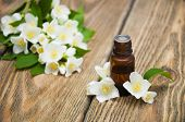 picture of jasmine  - Jasmine essential oil with jasmine flowers on a wooden background - JPG