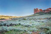stock photo of prairie  - prairie - JPG