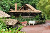 Traditional Costa Rican Home