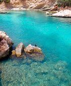 Calvia Cala Fornells with cormoran birds in Majorca at balearic islands of Spain