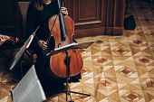Постер, плакат: Elegant String Quartet Performing In Luxury Room At Wedding Reception In Restaurant Woman In Black