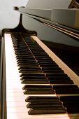 Keyboard Of A Baby Grand Piano