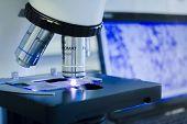 Laboratory Microscope. Scientific Research In The Laboratory. Study Of Bacteria Under A Microscope. poster